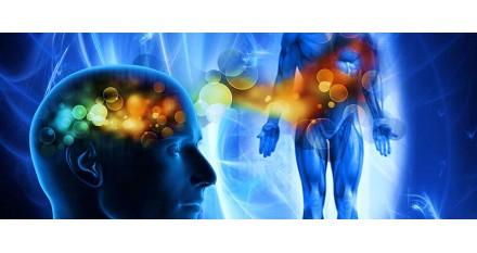 PNEI, PSICONEUROENDOCRINOIMMUNOLOGIA E INFERMIERISTICA